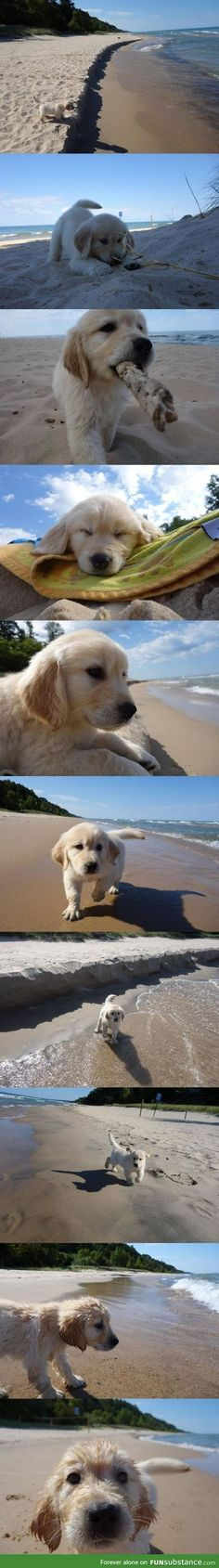 First trip to the beach? That's golden!