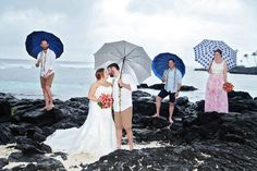 Experience Serenity & Tranquillity At Samoa's most iconic Beach. Book Today for the Holiday of a Lifetime at Return To Paradise Resort. Paradise Beach Resort, Tropical Weddings, Beach Resorts