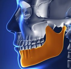 The jaw, skull, neck, and brain are all connected. A blow to one can cause damage elsewhere.