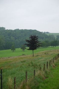 Raar, Limburg
