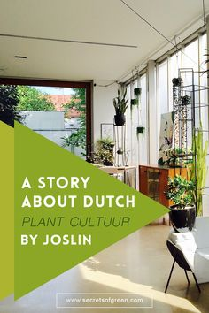 A Story About Dutch