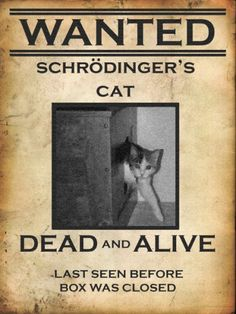 Oh Big Bang Theory, makes me laugh every time.this is from one of my fave big bang episodes Physics Jokes, Funny Science Jokes, Humour Geek, Nerd Humor, Cat Quotes, Funny Quotes, Funny Memes, Hilarious, Schrodingers Cat