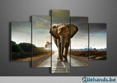 Olifant schilderij print canvas op houten kader!new