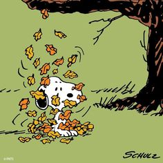 Snoopy leaves falling onto him in a pile