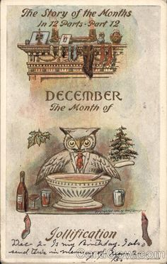 December - The Month of Jollification Months Owls