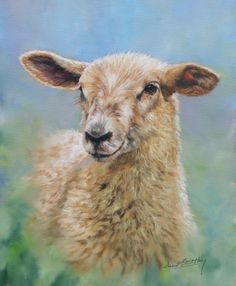 Sheep painting by David Stribbling
