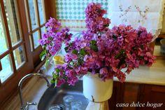 casa dulce hogar my kitchen