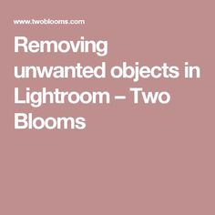 Removing unwanted objects in Lightroom – Two Blooms