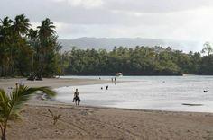 Playa Las Ballenas, Las Terrenas, R.D.