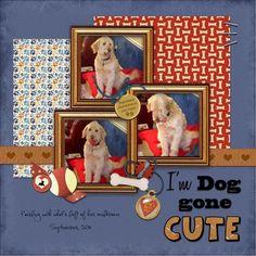 #papercraft #scrapbook #layout. I'm Doggone Cute, puppies in box