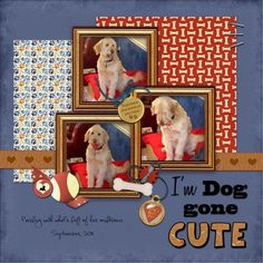 #papercraft #scrapbook #layout. I'm Doggone Cute, puppies in box