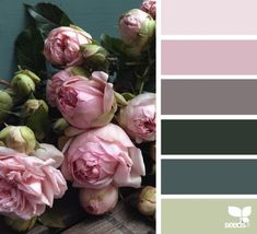 today's inspiration image for { flora palette } is by . thank you, Steph, for another breathtaking photo share! Colour Pallette, Colour Schemes, Color Combos, Color Patterns, Color Harmony, Color Balance, Design Seeds, Paleta Pantone, World Of Color
