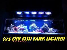 Blue Fluorescent Light Bulbs For Fish Tank - Halogens are usually used in track illumination systems, ultramodern lighting Aquarium Stand, Aquarium Setup, Led Aquarium Lighting, Diy Aquarium, Aquarium Design, Aquarium Ideas, Saltwater Tank, Saltwater Aquarium, Freshwater Aquarium