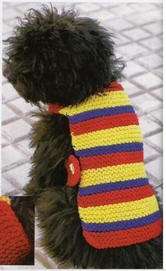 ropa tejida para perro Dog Dresses, Loom Knitting, Pet Shop, Winter Hats, Cats, Shopping, Doggies, Google, Videos