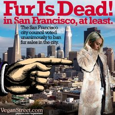Yay, San Francisco! Their city council voted unanimously to ban sales of animal fur in the city. West Hollywood and Berkeley have already done so. Let's work on getting many cities around the world to do the same. http://veganstreet.com/dailymeme-3-22-18.html