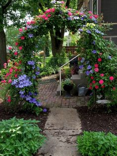 Arbor with clematis and roses