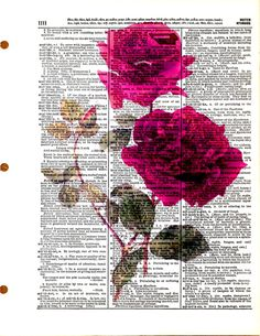 Two Roses  Vintage Dictionary Book Page Art by KFLGetsHerFunkOn
