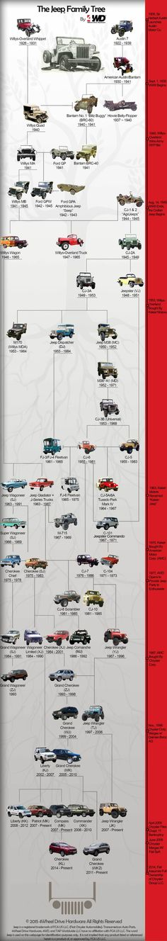 The Jeep Family Tree isn't quite as straightforward as you'd think. Take a look at the lineage of the Jeep with this Jeep Family Tree by Jeep Willys, Jeep Wj, Auto Jeep, Jeep Truck, Jeep Wagoneer, Willys Wagon, Jeep Pickup, Jeep Cherokee, Hors Route
