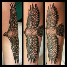 traditional red tail hawk tattoo - Google Search
