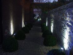 Outdoor Lighting, Garden Design, Aquarium, Landscaping, Led, Lights, Cool Stuff, House, Goldfish Bowl