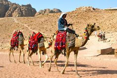 Yes i rode camels on the Canary Islands