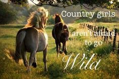 We Are Wild, Like Wild horses