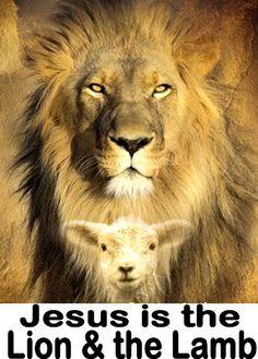 Jesus is the Lion & the Lamb<3