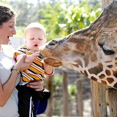 10 Best Zoos for Kids: 1. Tampa's Lowry Park Zoo  Gonna be here next week!