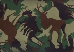 animal camouflage patterns - Google Search