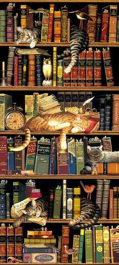Gatos,livros,gatos,livros.