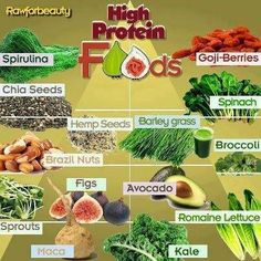Protein is an important part of our diets. Here are some vegan forms of protein.