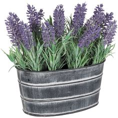 """Lavender in Metal Pot by Cambridge Home. Vibrant lavender foliage in metal pot. Constructed of plastic and wire. Available in stores only. Width: 4.5000""""   Height: 8""""   Depth: 7   Color/Finish: Green > Purple/Lavander Outdoor Planters, Outdoor Gardens, Diy Garden Decor, Garden Art, Diy Decoration, Cambridge, Flower Landscape, Landscape Design, Garden Shrubs"""