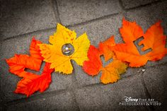 We've fallen in love with this fall-inspired ring pic #fall #leaves #wedding #ring #shot #photography