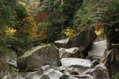 島根県のダイナミックな自然を体感できるのが鬼の舌震 名前は奇抜ですが鬼が住んでいる訳ではありません(笑) 谷のいたるところにはんど岩や亀岩千畳敷天狗遊岩畳石など風化や水食による奇岩や怪岩がごろごろ転がっていて自然の荒々しさを感じることができますよ tags[島根県]