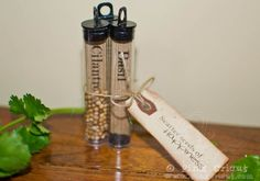 Make seed starter gifts