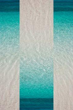 Project idea! Cut photo into sections, then rearrange/flip! Focus on color !& texture...:-)