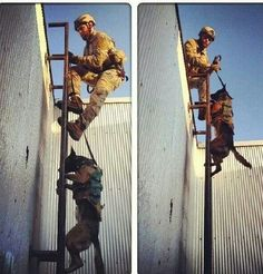 Navy Seal dog training