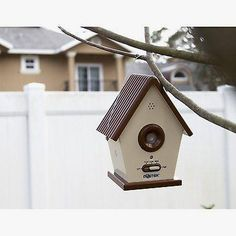 Sonic Birdhouse Bark Control      >>> Check this out   http://amzn.to/2c5dzM8