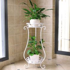 """Universe of goods - Buy """"Iron Plant Shelves European flower balcony Double-deck Plant frame Living room Indoor Floor type Green fleshy Flower Shelf"""" for only USD. Outdoor Plants, Outdoor Gardens, Cedar Plant, Tall Plant Stands, Cheap Plants, Green Orchid, Iron Plant, Indoor Flowers, Flower Stands"""