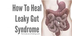 How To Heal Leaky Gut If you are you suffering from brain fog, confusion, poor memory, irritability, or even a more serious disease like cancer, diabetes,...