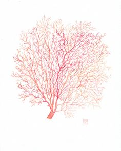 Red Coral Sea Fan giclee print, watercolor illustration - Beach cottage decor in red, pink and orange - Fine art reproduction, inches Watercolor Illustration, Watercolor Paintings, Watercolors, Arte Coral, Coral Pantone, Decoupage, Coral Watercolor, Beach Cottage Decor, Art Reproductions
