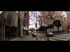 Our Jack spent 3 months in #LA and took this #video! enjoy the #HD  #LosAngeles