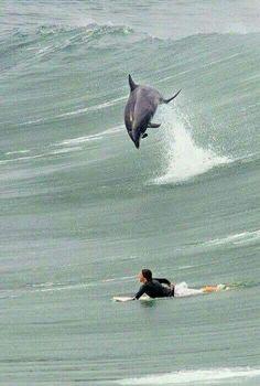 Surfen mit Partner