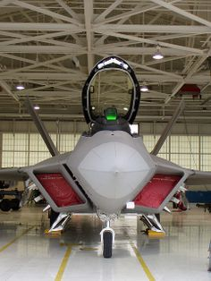 F-22 Raptor - Check our pinterest board for more cool stuff!