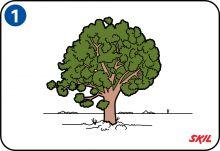 Sådan bygger du et træhus i et træ