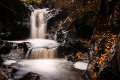 Autumn Falls Photograph. Orangey autumn leaves gather on the glossy rocks around this waterfall in Galloway, Scotlan , UK http://hiddengalloway.com/