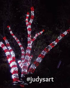 Red and White Candy Cane Outdoor Christmas Lights Display. Source by Lighting outdoor Outdoor Christmas Light Displays, Christmas Lights Outside, White Christmas Lights, Christmas Light Installation, Hanging Christmas Lights, Xmas Lights, Christmas Yard, Decorating With Christmas Lights, Outdoor Christmas Decorations