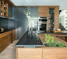 beautiful contemporary wood and gray kitchen with built in planter