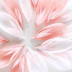 Paper flowers by UK paper flower artist A Petal Unfolds