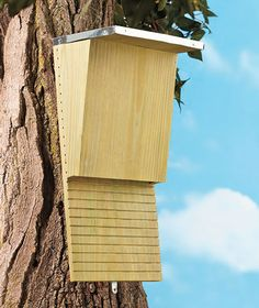 Bat Houses  $8.95 each- such a bargain for mosquito control!
